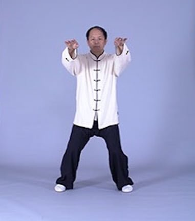 The Importance of Posture in Taijiquan