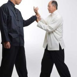 Reflections on Taijiquan—A Complex Art