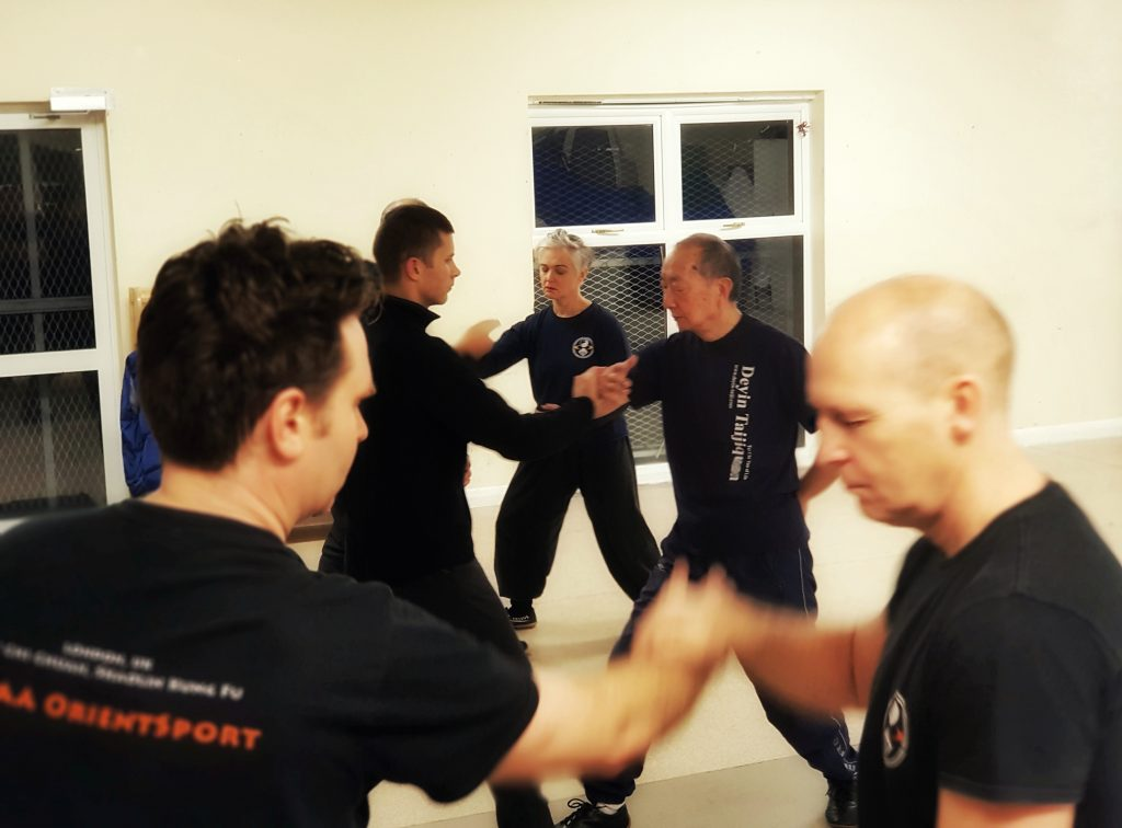 Tai Chi Classes - Pushing Hands