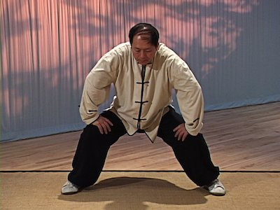 Analysis of Taijiquan Techniques