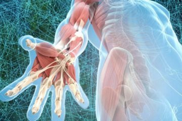 How Fascia Can Help Us Unravel Deeply Held Tension