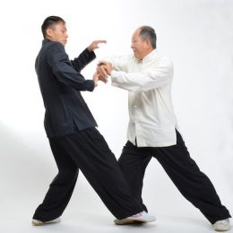 Tai Chi -offensive power